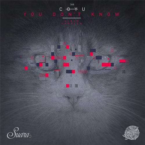You Don't Know (Album Sampler)