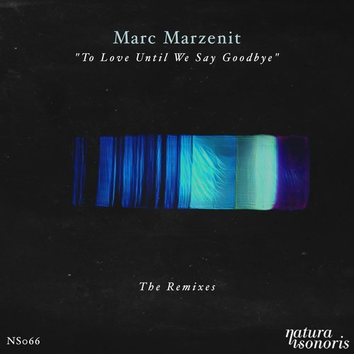 To Love Until We Say Goodbye. The Remixes
